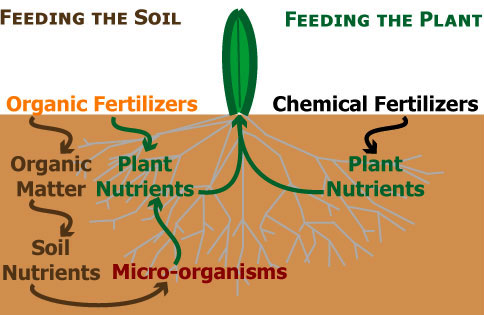 Organic Fertilizer - Matrixx